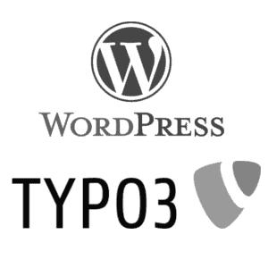 CMS_Typo3_Wordpress_netkin_digital